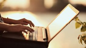 Woman typing on a laptop keyboard in a warm sunny day outdoors. Sunset. stock video