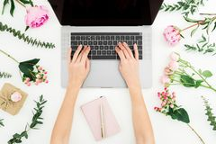 Woman typing on laptop. Workspace with female, laptop, notebook and pink flowers on white background. Top view. Flat lay. Woman typing on laptop. Workspace with stock photo