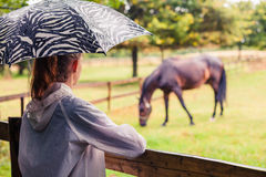 Woman with umbrella looking at horse Royalty Free Stock Images