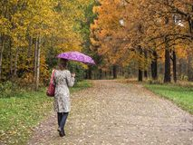 Woman with umbrella in the Park. royalty free stock photo