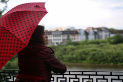 Woman with umbrella red on street tree Stock Image