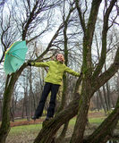 Woman with an umbrella stands on a tree. On forest background Stock Photos