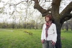 Woman under blossom tree Stock Image