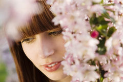 Woman Under Blossoming Tree Stock Photo