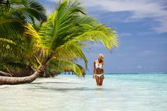 Woman under palm. Sea on backgroud Royalty Free Stock Images