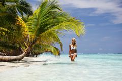 Woman under palm. Sea on backgroud Royalty Free Stock Image