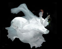 Woman Underwater Wearing White Gown Stock Image