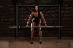 Woman In Underwear Doing Exercise For Back. Young Woman In Underwear Doing Heavy Weight Exercise For Back With Barbell stock images