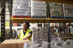 Woman using a barcode reader in a warehouse, wide shot Royalty Free Stock Photo