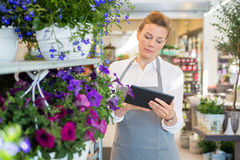 Woman Using Digital Tablet In Flower Shop Stock Photos
