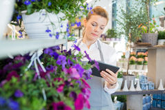 Woman Using Digital Tablet In Flower Shop Royalty Free Stock Photo