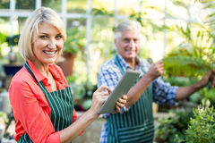 Woman using digital tablet while man working at greenhouse. Portrait of happy women using digital tablet while men working at greenhouse Royalty Free Stock Photo