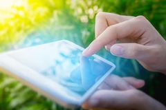 Woman using finger touch screen on mobile smartphone in green na. Ture background Stock Photos