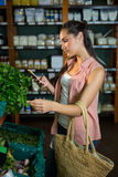 Woman using her phone while buying vegetables in organic section Stock Images