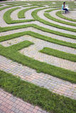 Woman Using Laptop in a Cobblestone Maze Stock Images