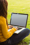 Woman using laptop in park Stock Photography