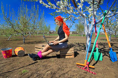 Woman using laptops in garden Stock Images