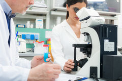 Woman using a microscope in a laboratory Stock Photography