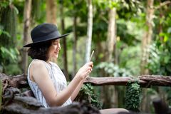 Woman using mobile phone in the forest stock image