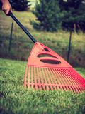 Woman using rake to clean up garden lawn stock images