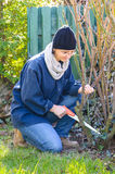Woman using saw in garden Stock Photos
