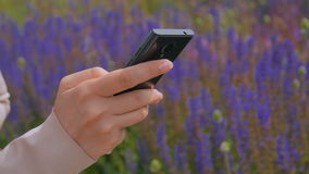 Woman using smartphone in the park. Scrolling and touching. Nature and technology concept stock video