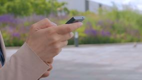 Woman using smartphone in the park. Scrolling and touching. Nature and technology concept stock footage