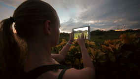 Woman using tablet PC to take photos of nature. Young woman with touch pad outdoor. She taking pictures of beautiful scenes with flowers stock footage
