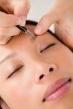 Woman using tweezers on patient eyebrow Stock Image