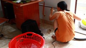 Woman using vacuum cleaner stock video footage