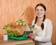 Woman with various seedlings Royalty Free Stock Images
