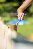 Woman varnishing a wooden fence outdoors in a home patio royalty free stock images