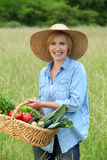 Woman with vegetable basket Royalty Free Stock Photography