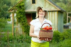Woman with vegetables harvest Stock Photography
