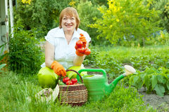 Woman with vegetables harvest Royalty Free Stock Photography