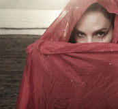 Woman with a veil. Young woman with a veil covering her face Stock Images