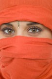 Woman with a veil. Young woman with a veil, close up portrait, studio picture Stock Photography