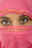 Woman with a veil. Young woman with a veil, close up portrait, studio picture Stock Images