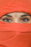 Woman veil. Young woman with a veil, close up portrait, studio picture Royalty Free Stock Photography