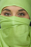 Woman veil. Young woman with a veil, close up portrait, studio picture Stock Photos