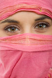 Woman veil. Young woman with a veil, close up portrait, studio picture Stock Images