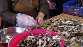 Woman Vendor Cut Up the Fish in the Fish Market. Slow Motion stock video footage
