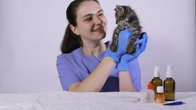 A woman veterinarian in a blue uniform holds a gray kitten, smiles and talks to a sick cat.