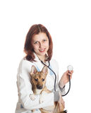 Woman veterinarian and dog Royalty Free Stock Images