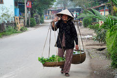 Woman in Vietnam wearing traditional triangular straw palm hats Stock Photography