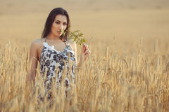 Woman in the village on the field. Woman in a village on a wheat field, evening sunset time royalty free stock images