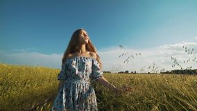 A woman from the village walks along the road along the field stock footage