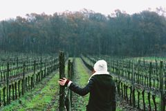 Woman on vineyard Stock Photo