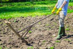 Woman with vintage plow on the field Stock Photo