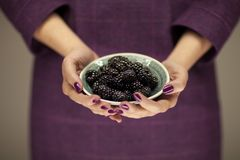 Woman in violett 50`s dress hands holding some blackberries. Sensual studio shot can be used as background Royalty Free Stock Photos